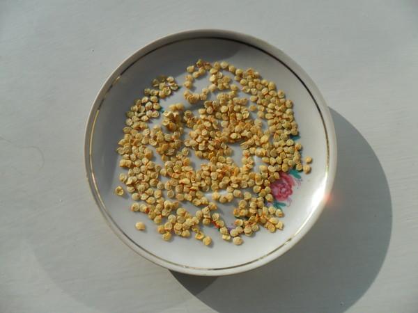 Чим знезаразити насіння перед посадкою. Знезараження (дезінфекція) насіння перед посадкою